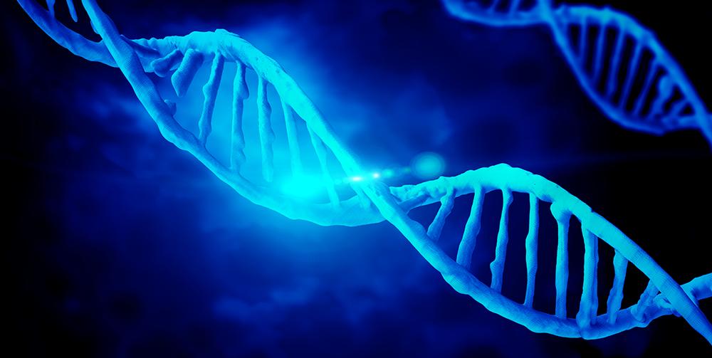 Blog-Genetics-Vein-Disease